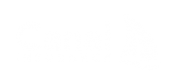 Canal Insurance logo